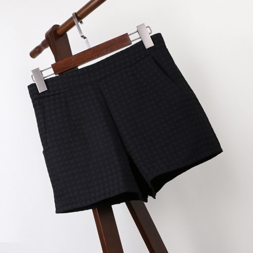 Korean High-Waisted Shorts